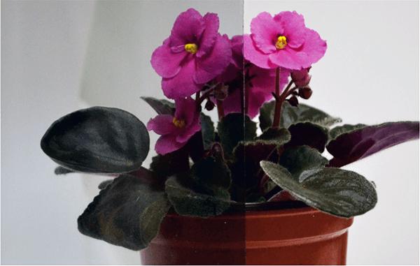 Скло-тон-бронза